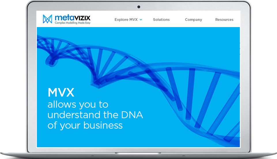 MetaVizix website